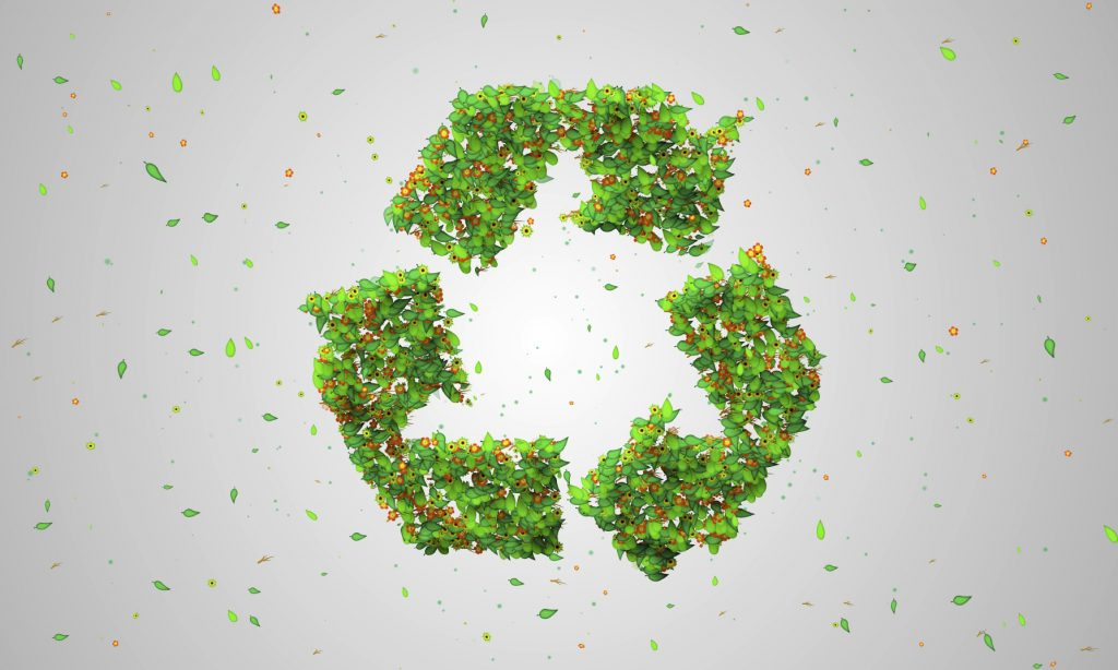 Recycle-Symbol-Green-Leaves-iStock_000042254332_Medium