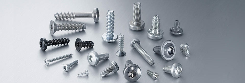 A selection of different types of screws