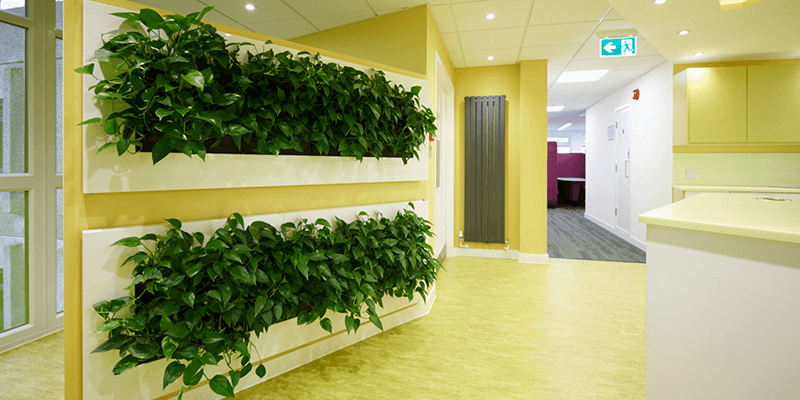 workplace consultants, office design and office fit out example